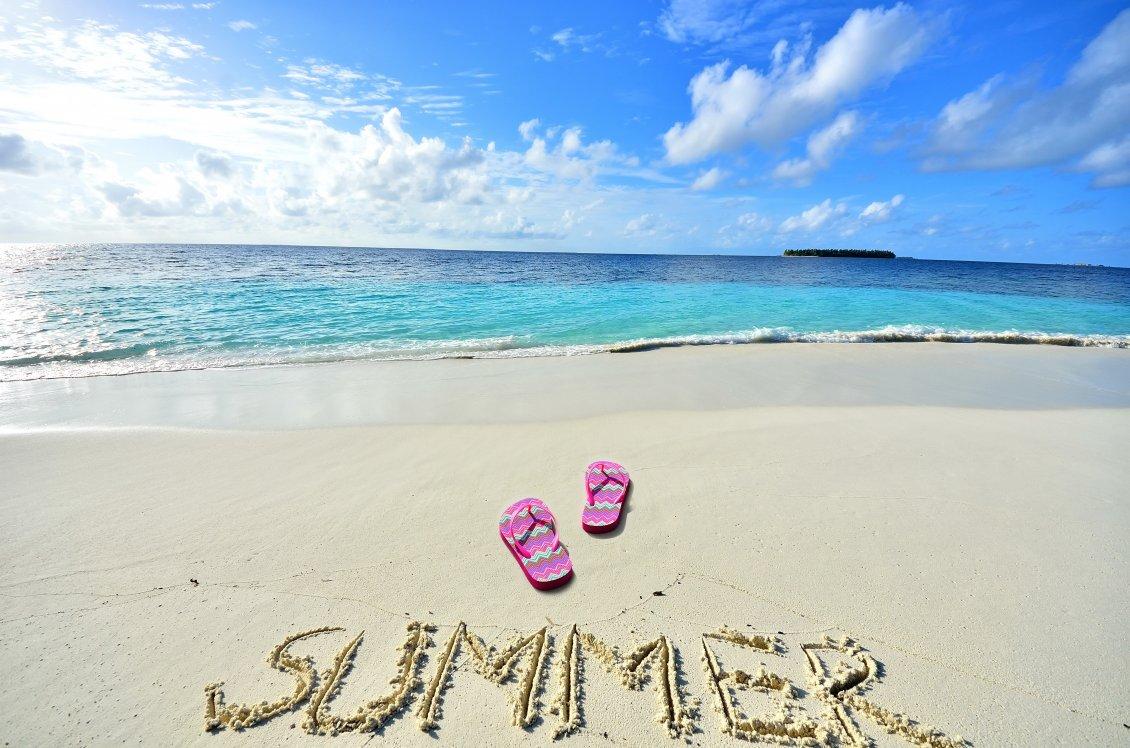 Summer Learning Opportunities/Oportunidades de Aprendizaje de Verano